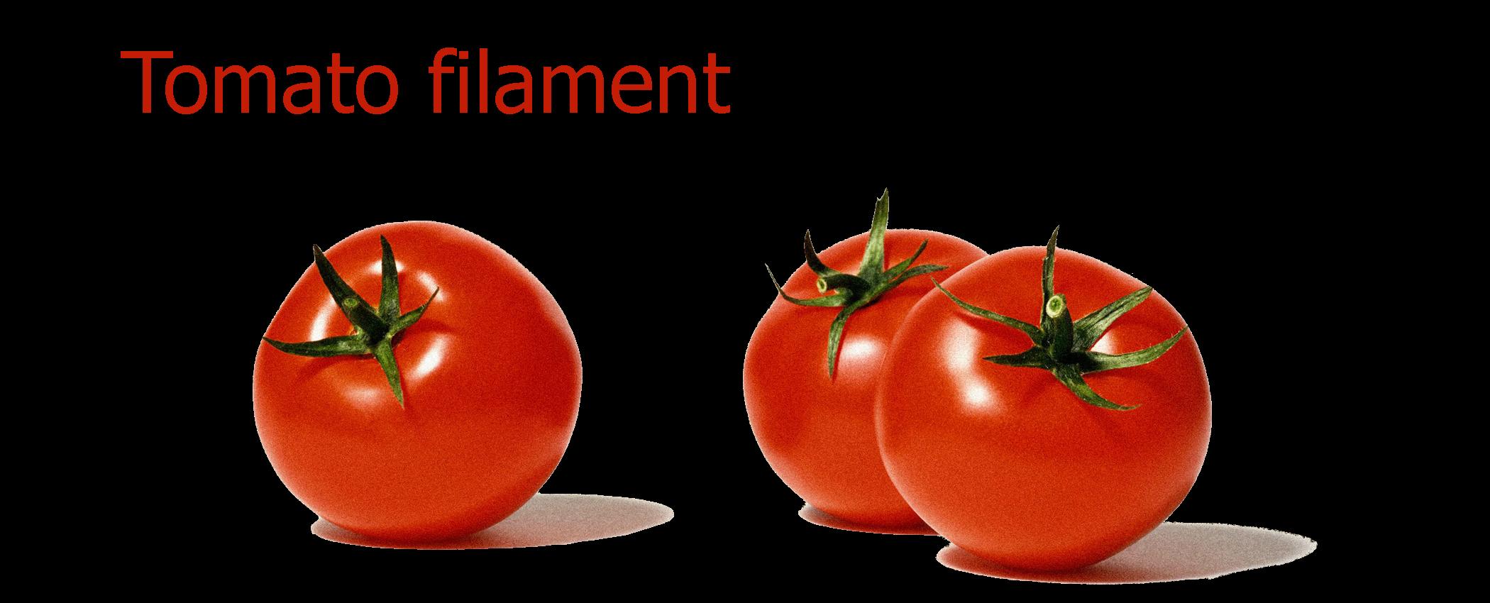 Tomatohemprinted